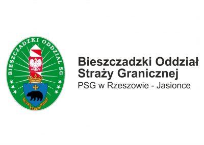 logo_partner_psgrj